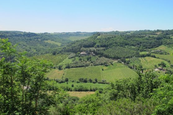 The view from Orvieto