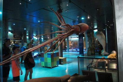 Hall of Evolution, Paris